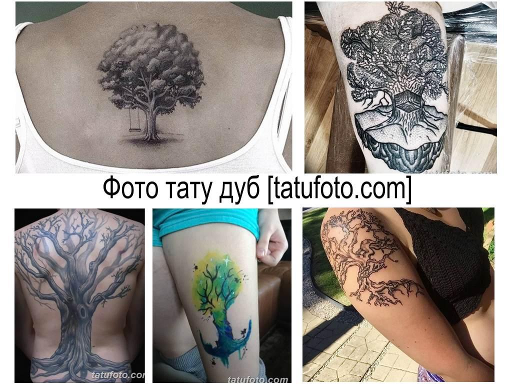 Фото тату дуб - оригинальные рисунки готовых татуировок