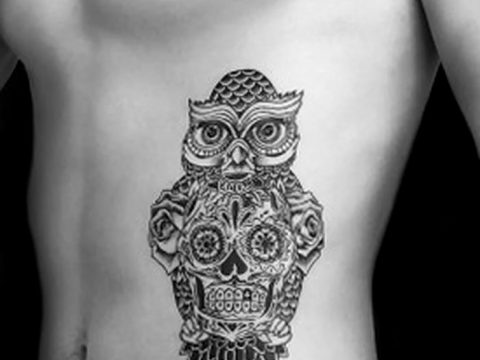 Фото тату сова с черепом 15.10.2018 №100 - owl tattoo with skull - tatufoto.com