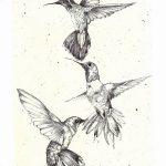 Фото эскиз тату колибри 15.10.2018 №016 - sketch of hummingbird tattoo - tatufoto.com