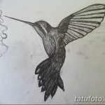Фото эскиз тату колибри 15.10.2018 №017 - sketch of hummingbird tattoo - tatufoto.com
