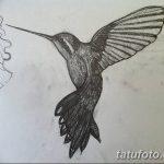 Фото эскиз тату колибри 15.10.2018 №017 - sketch of hummingbird tattoo - tatufoto.com