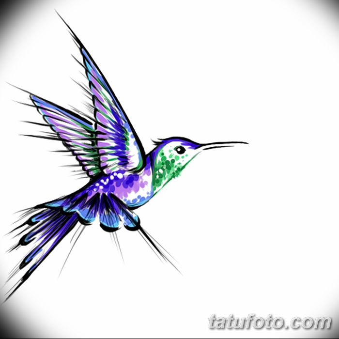 Эскизы тату колибри