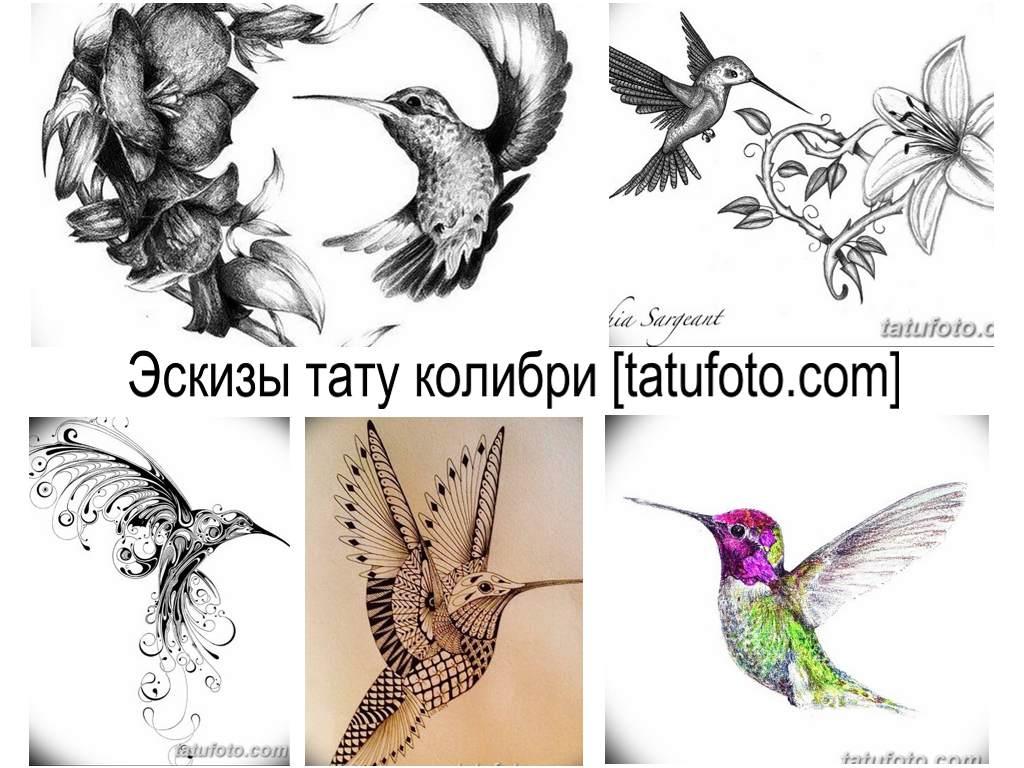 Эскизы тату колибри - оригинальные рисунки для татуировки