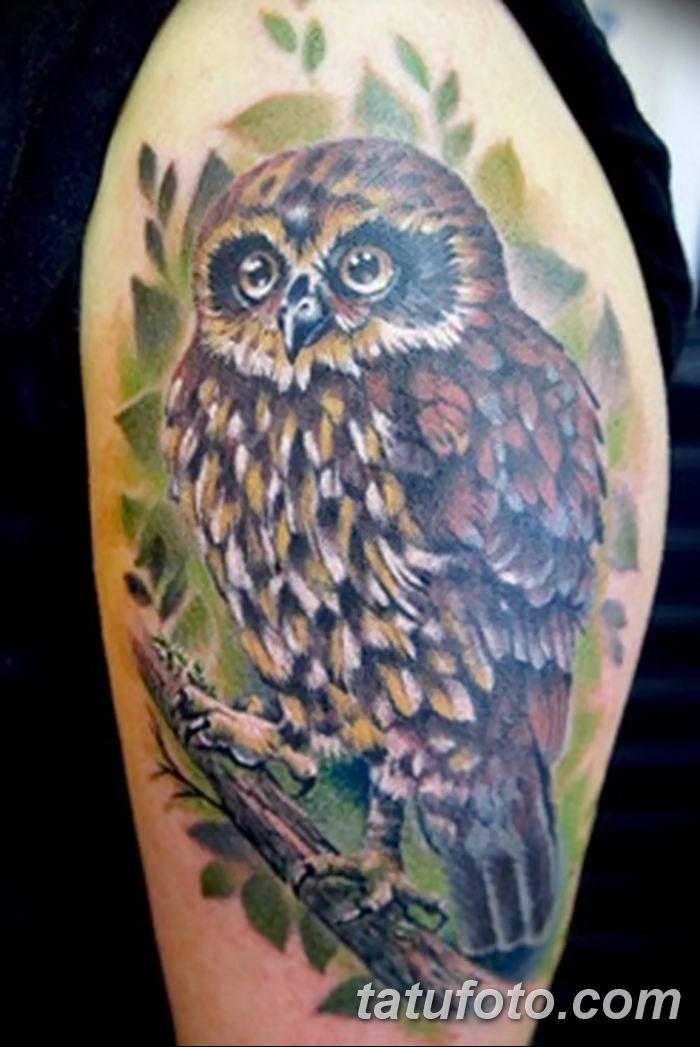 Фото рисунка Яркой татуировки 11.11.2018 №061 - photo Bright tattoo - tatufoto.com