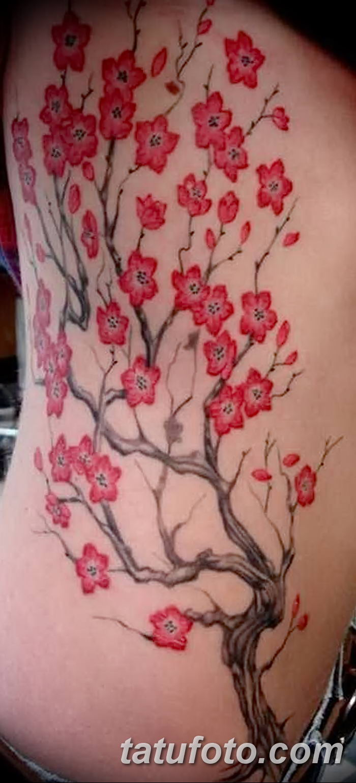 Фото рисунка Яркой татуировки 11.11.2018 №102 - photo Bright tattoo - tatufoto.com
