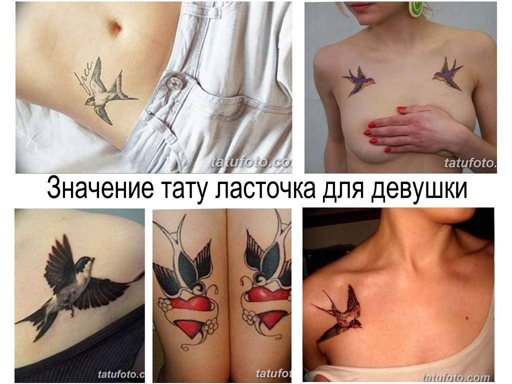 Значение тату ласточка для девушки - информация и фото примеры рисунков татуировки