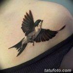 фото тату ласточка для девушки 24.12.2018 №016 - tattoo swallow for a girl - tatufoto.com