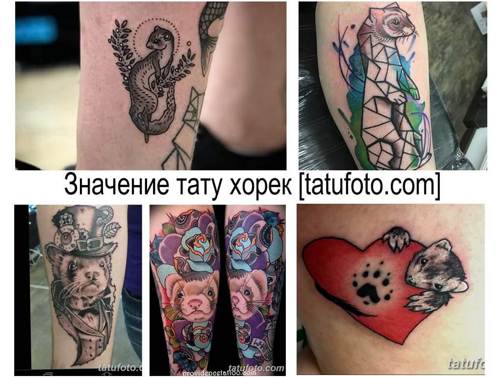 Значение тату хорек - информация про особенности рисунка и фото примеры готовых тату