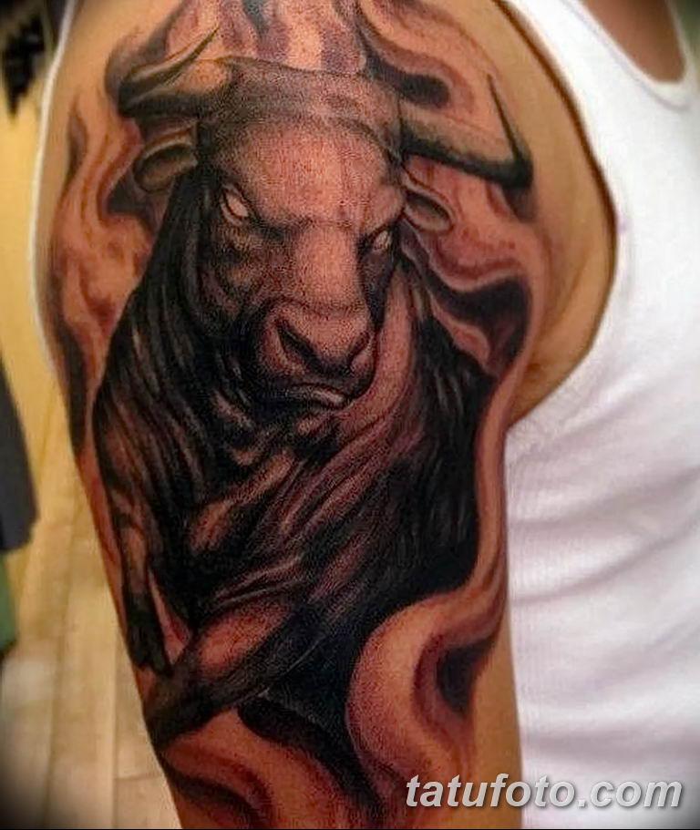 Фото тату бык на плечо