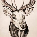 эскиз тату олень 23.02.2019 №009 - sketch tattoo deer - tatufoto.com