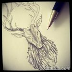 эскиз тату олень 23.02.2019 №035 - sketch tattoo deer - tatufoto.com
