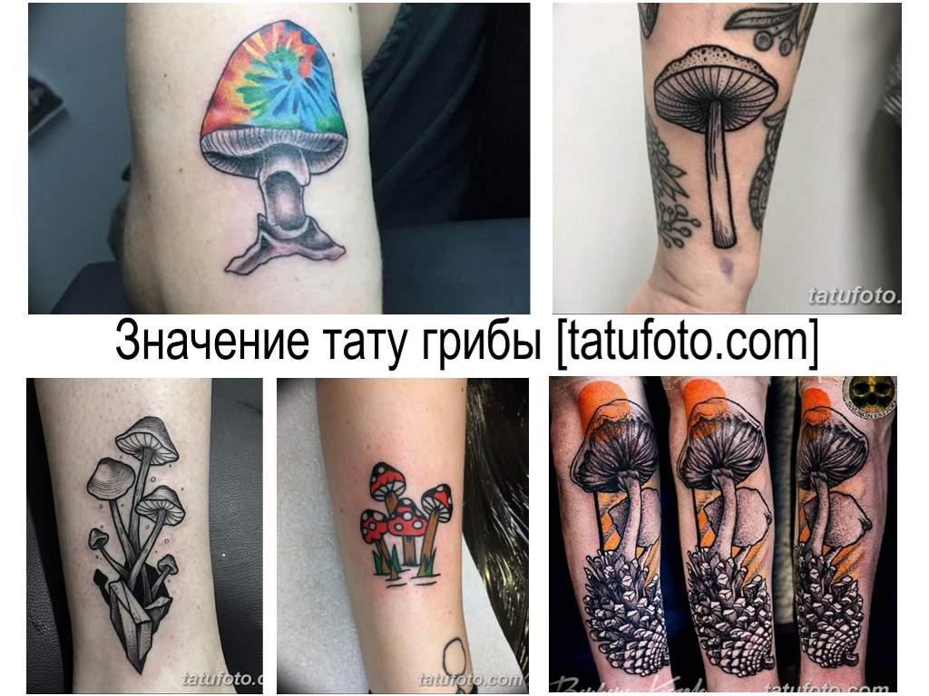 Значение тату грибы - информация про особенности рисунка и фото коллекция готовых татуировок