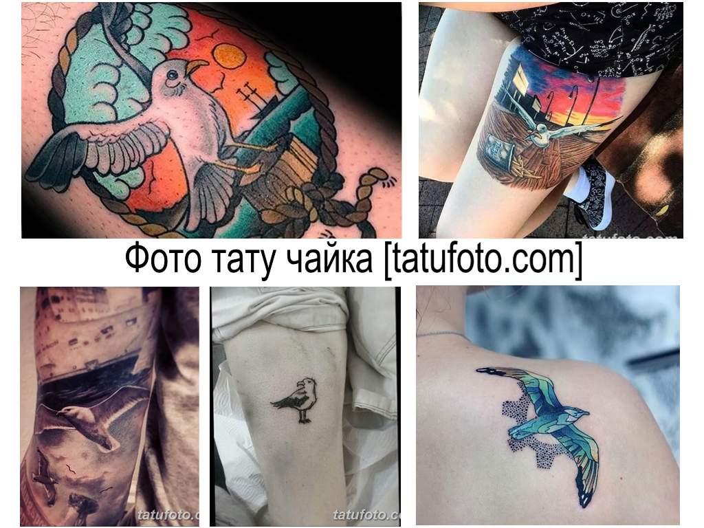 Фото тату чайка - коллекция готовых рисунков татуировки и интересная информация про особенности рисунка