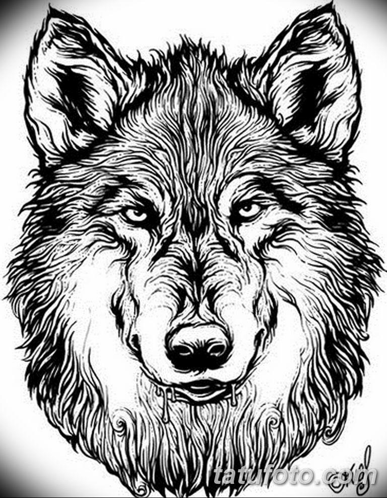 Картинки тату волка придумывает