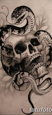 тату змея эскизы мужские 09.03.2019 №005 – tattoo sketches – tatufoto.com