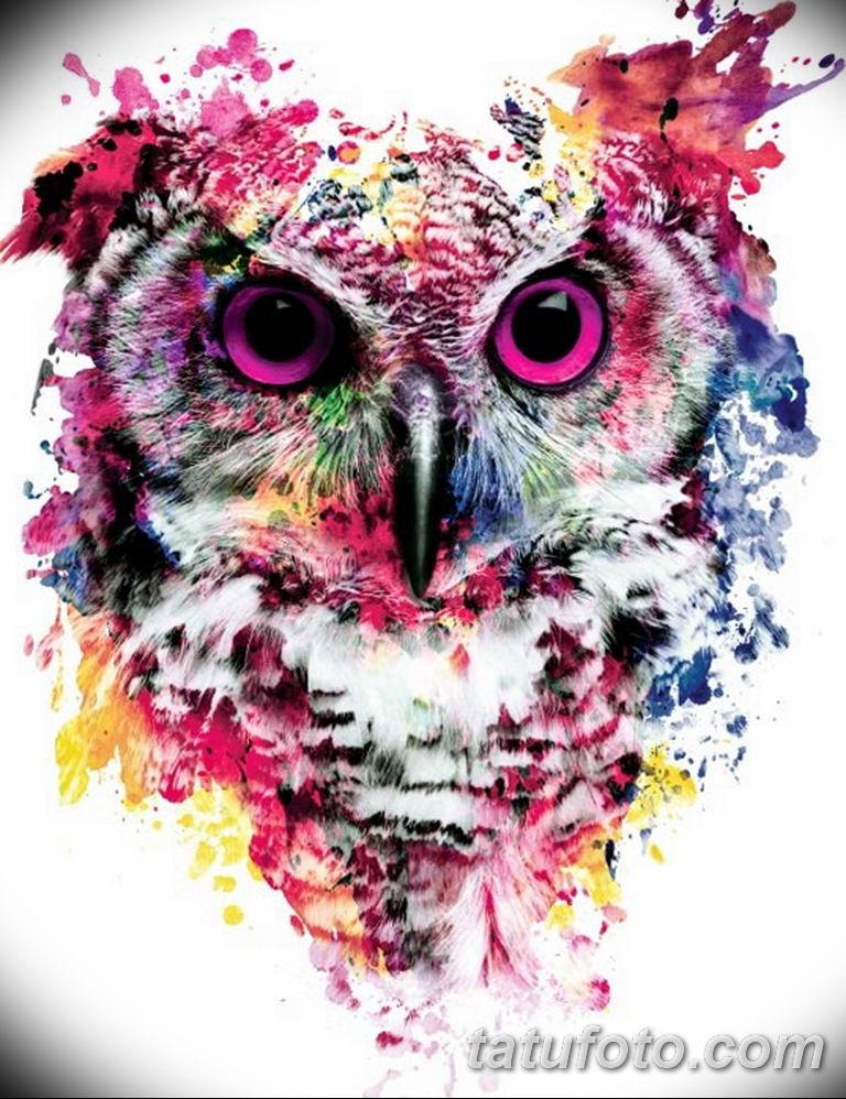 тату сова эскиз для девушек 08.03.2019 №054 - tattoo sketches - tatufoto.com