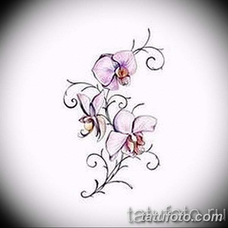 тату эскизы для девушек цветы 08.03.2019 №007 - tattoo sketches - tatufoto.com