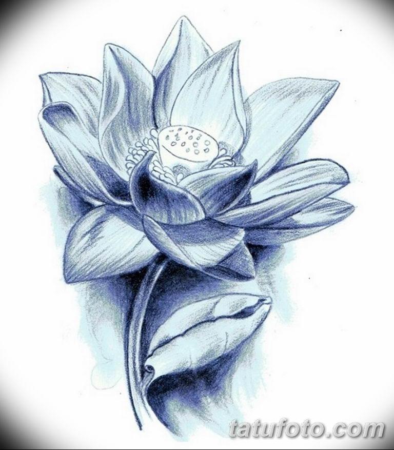 тату эскизы для девушек цветы 08.03.2019 №020 - tattoo sketches - tatufoto.com