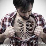 фото идея вариант тату скелет 26.03.2019 №005 - skeleton tattoo - tatufoto.com
