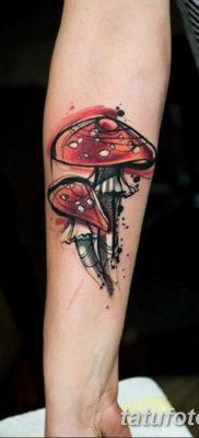 фото рисунка тату гриб 27.03.2019 №046 – tattoo mushroom – tatufoto.com