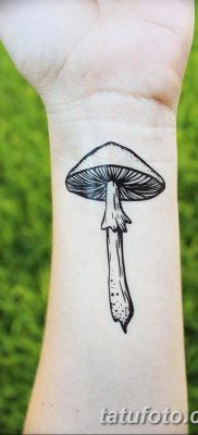 фото рисунка тату гриб 27.03.2019 №063 – tattoo mushroom – tatufoto.com