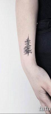 фото тату Ёлки 05.03.2019 №047 – photo tattoo Christmas trees – tatufoto.com