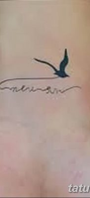 фото тату чайка 06.03.2019 №052 – photo tattoo seagull – tatufoto.com