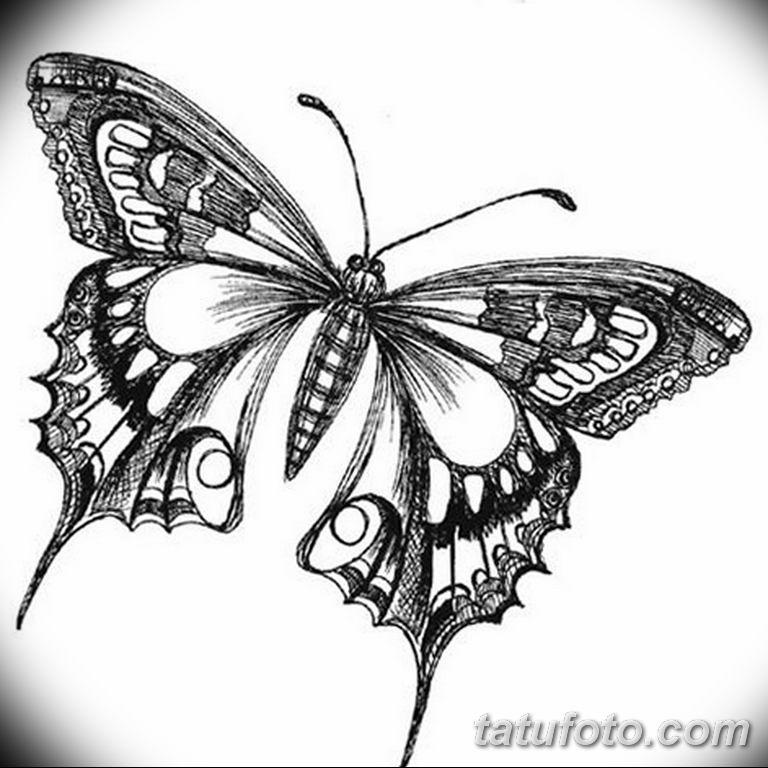 черно белый эскиз тату рисункок бабочка 11.03.2019 №003 - tattoo sketch - tatufoto.com