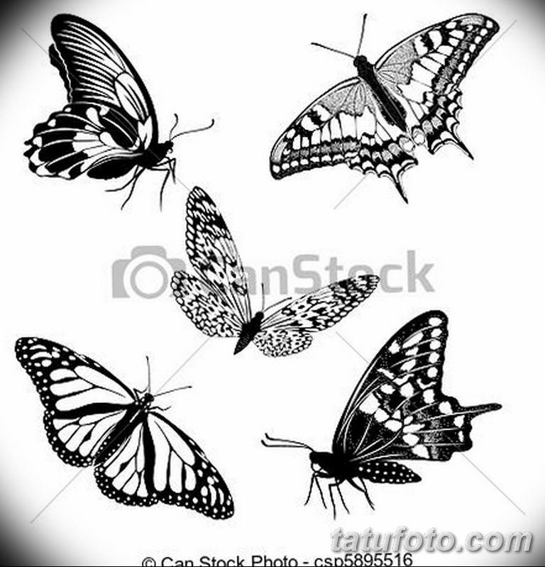 черно белый эскиз тату рисункок бабочка 11.03.2019 №008 - tattoo sketch - tatufoto.com