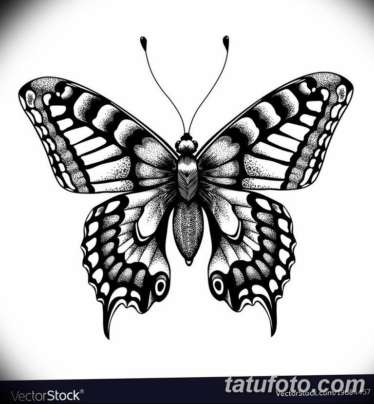 черно белый эскиз тату рисункок бабочка 11.03.2019 №010 - tattoo sketch - tatufoto.com