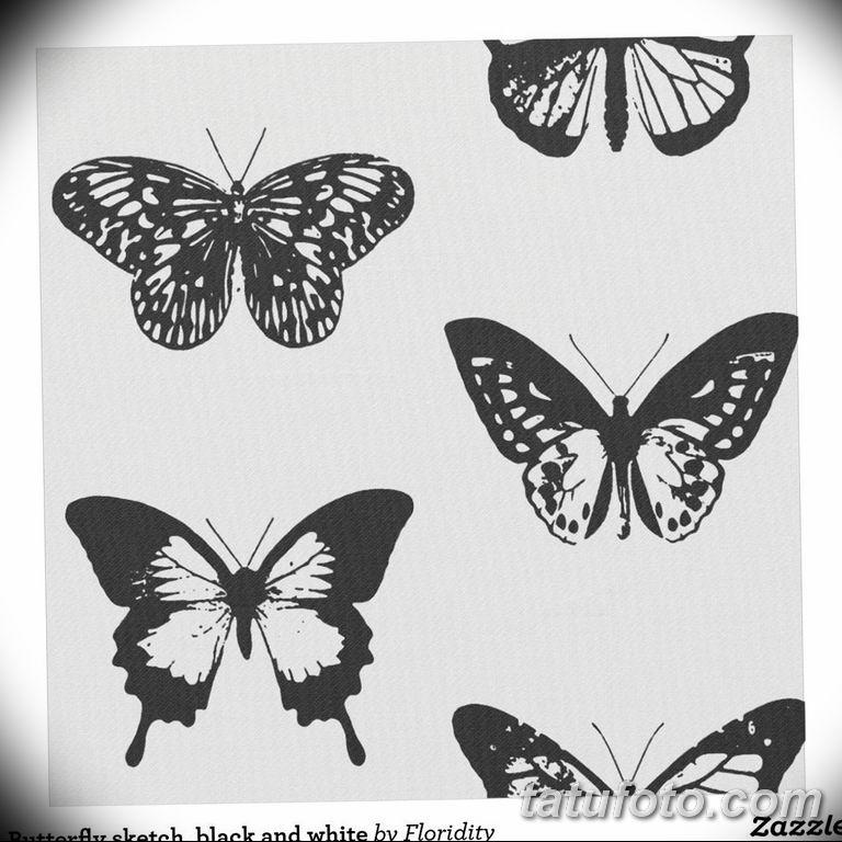 черно белый эскиз тату рисункок бабочка 11.03.2019 №013 - tattoo sketch - tatufoto.com