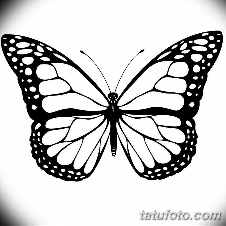 черно белый эскиз тату рисункок бабочка 11.03.2019 №015 - tattoo sketch - tatufoto.com