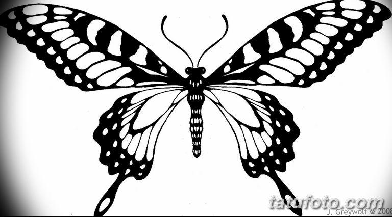 черно белый эскиз тату рисункок бабочка 11.03.2019 №017 - tattoo sketch - tatufoto.com