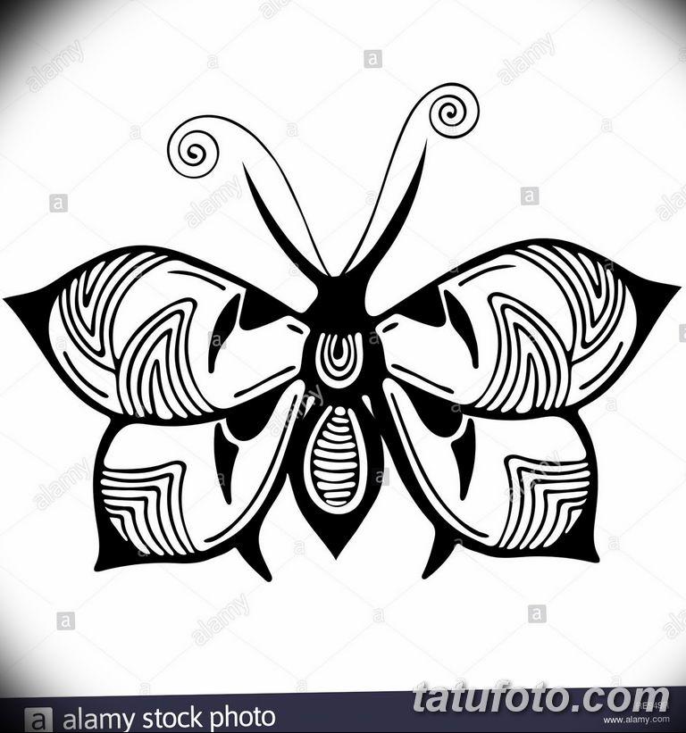 черно белый эскиз тату рисункок бабочка 11.03.2019 №018 - tattoo sketch - tatufoto.com