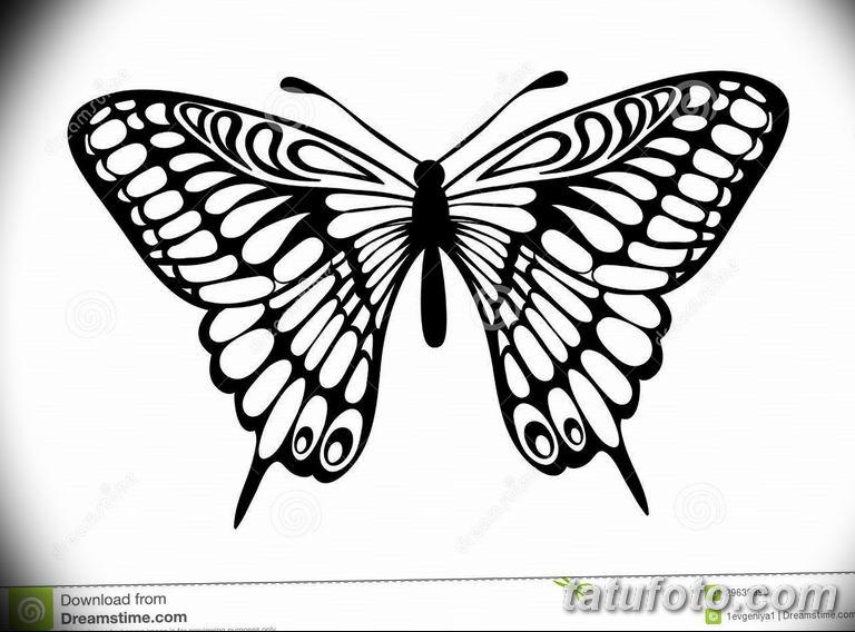 черно белый эскиз тату рисункок бабочка 11.03.2019 №021 - tattoo sketch - tatufoto.com