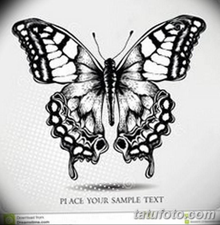 черно белый эскиз тату рисункок бабочка 11.03.2019 №025 - tattoo sketch - tatufoto.com