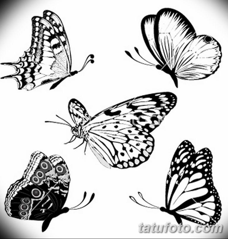 черно белый эскиз тату рисункок бабочка 11.03.2019 №027 - tattoo sketch - tatufoto.com