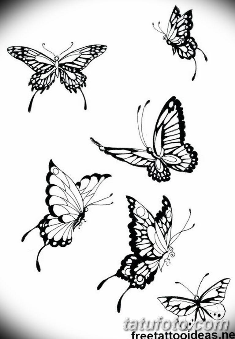 черно белый эскиз тату рисункок бабочка 11.03.2019 №038 - tattoo sketch - tatufoto.com