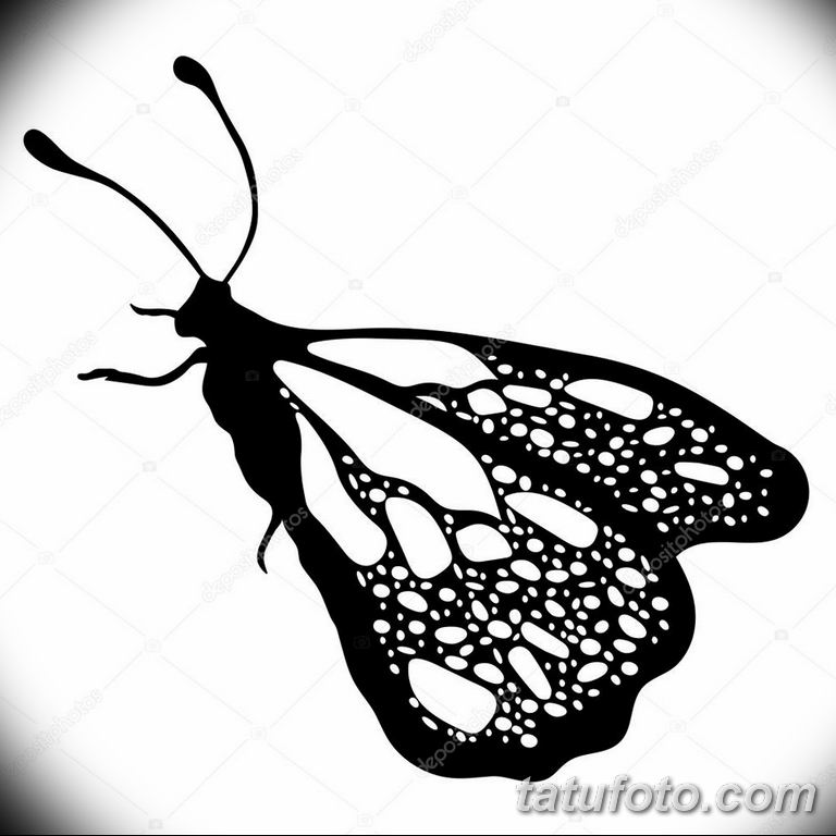 черно белый эскиз тату рисункок бабочка 11.03.2019 №041 - tattoo sketch - tatufoto.com