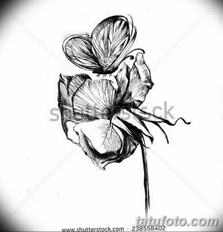 черно белый эскиз тату рисункок бабочка 11.03.2019 №049 - tattoo sketch - tatufoto.com