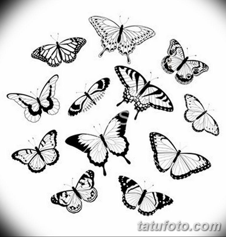 черно белый эскиз тату рисункок бабочка 11.03.2019 №072 - tattoo sketch - tatufoto.com