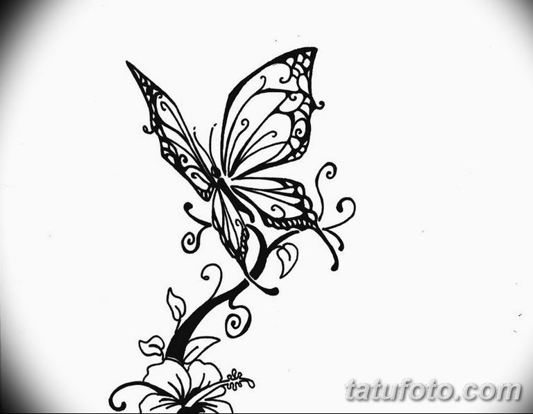 черно белый эскиз тату рисункок бабочка 11.03.2019 №086 - tattoo sketch - tatufoto.com