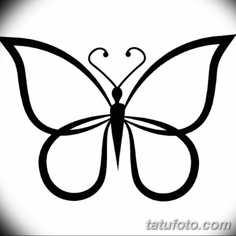 черно белый эскиз тату рисункок бабочка 11.03.2019 №091 - tattoo sketch - tatufoto.com