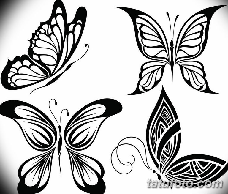 черно белый эскиз тату рисункок бабочка 11.03.2019 №099 - tattoo sketch - tatufoto.com
