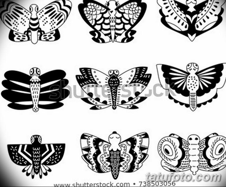 черно белый эскиз тату рисункок бабочка 11.03.2019 №100 - tattoo sketch - tatufoto.com