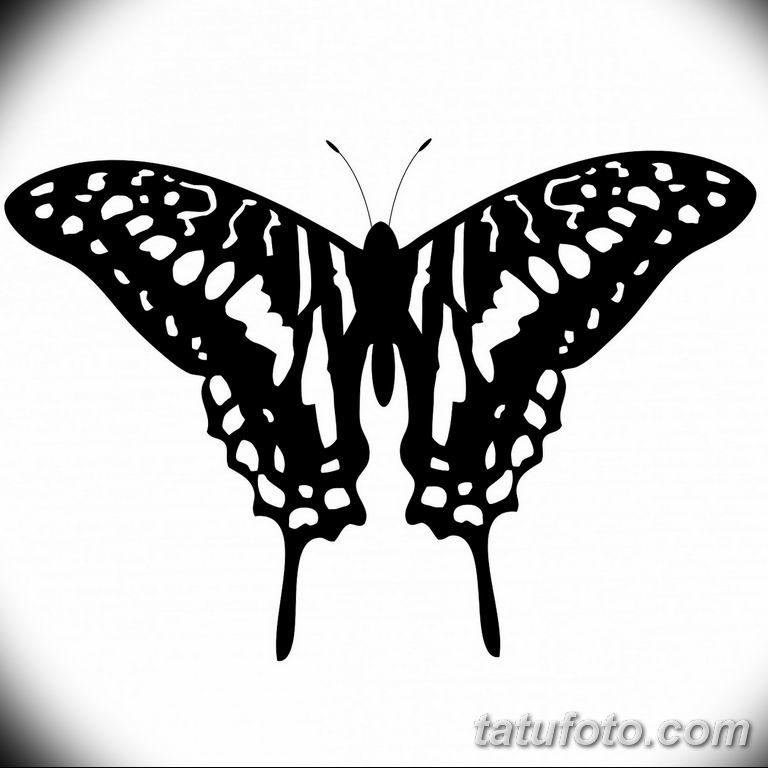черно белый эскиз тату рисункок бабочка 11.03.2019 №106 - tattoo sketch - tatufoto.com