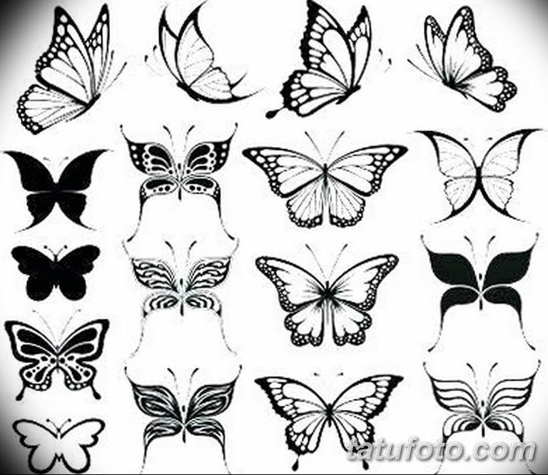черно белый эскиз тату рисункок бабочка 11.03.2019 №108 - tattoo sketch - tatufoto.com