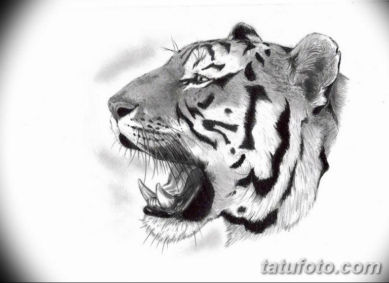 черно белый эскиз тату рисункок вариант 11.03.2019 №067 - tattoo sketch - tatufoto.com