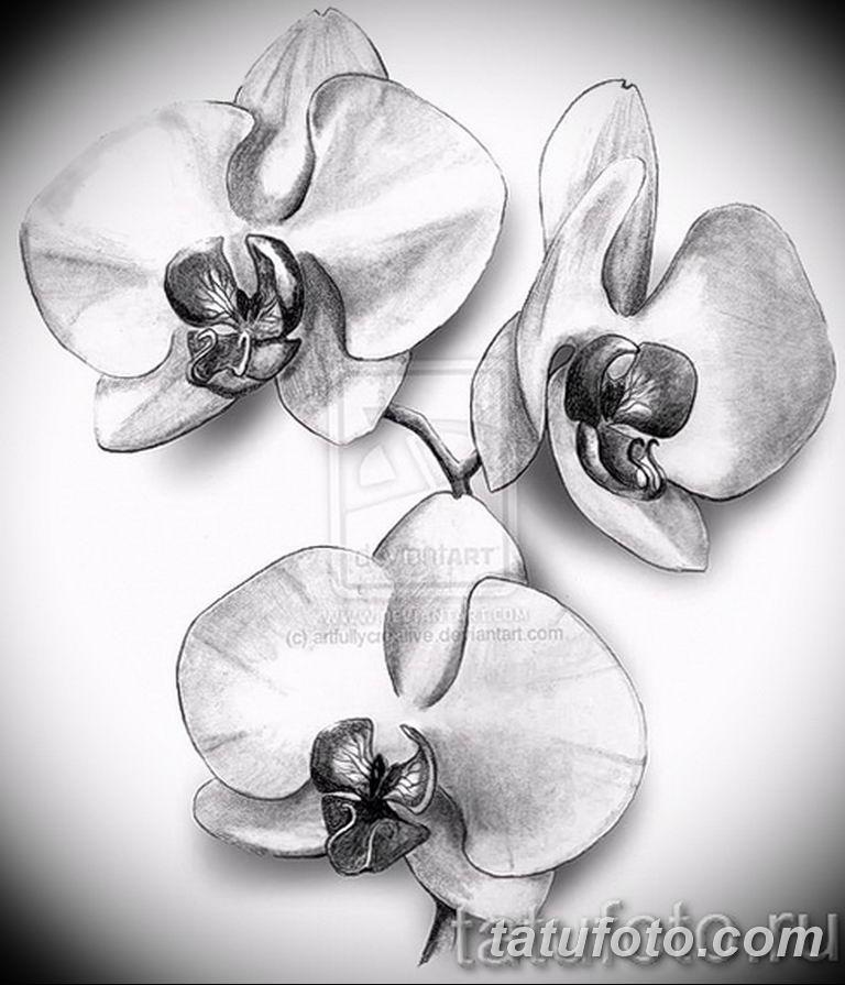 черно белый эскиз тату рисункок вариант 11.03.2019 №093 - tattoo sketch - tatufoto.com