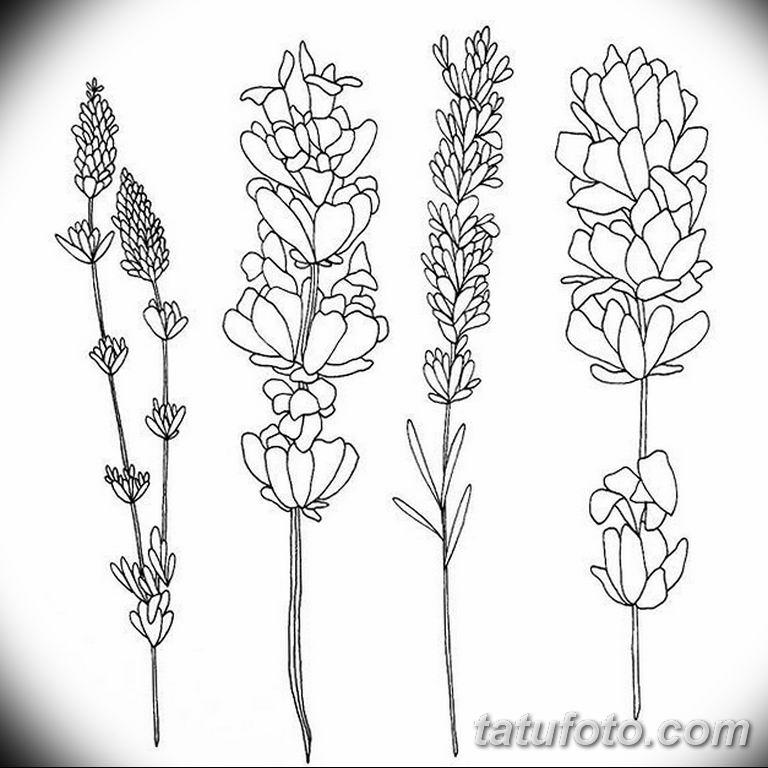 черно белый эскиз тату рисункок веточки 11.03.2019 №005 - tattoo sketch - tatufoto.com